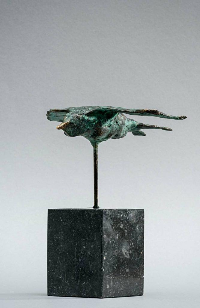 zwaluw - swallow